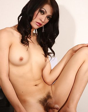 Hairy Shemale Porn Pics
